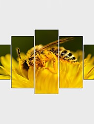Stretched Canvas Print Landscape Animal Modern,Five Panels Canvas Any Shape Print Wall Decor For Home Decoration
