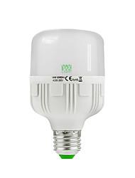 E26/E27 Ampoules Globe LED 30 diodes électroluminescentes SMD 2835 Décorative Blanc Chaud Blanc Froid 1200-1350lm 2800-3200/6000-6500K AC