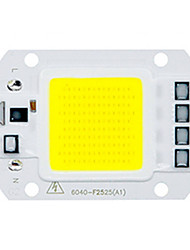 50W Utral Bright LED COB Chip 110V 220V Input Smart IC for DIY LED Flood Light  (1 Piece)