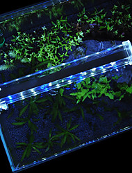 Aquarium LED Lighting White Blue With Switch(es) LED Lamp 220V