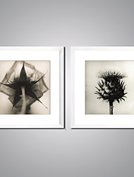 Framed Art Print Still Life Floral/Botanical Modern Realism,Two Panels Canvas Square Print Wall Decor For Home Decoration