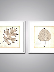 cheap -Framed Canvas Print Still Life Floral/Botanical Modern Realism,Two Panels Canvas Square Print Wall Decor For Home Decoration