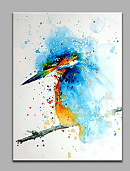 Hand-Painted Animal Woodpecker  Ready To Hang  Modern One Panel Canvas Oil Painting For Home Decoration
