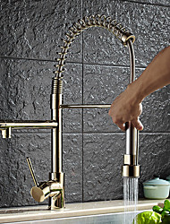 cheap -Kitchen faucet - Contemporary Art Deco/Retro Modern Ti-PVD Pull-out/­Pull-down Vessel