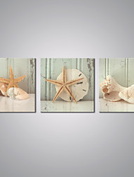cheap -Stretched Canvas Print Still Life Traditional, Three Panels Canvas Horizontal Print Wall Decor Home Decoration