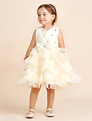 cheap -A-line Knee-length Flower Girl Dress - Chiffon / Lace / Stretch Satin Sleeveless Jewel with