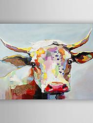 Pintados à mão Animal Horizontal,Moderna Estilo Artístico 1 Painel Tela Pintura a Óleo For Decoração para casa