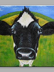 cheap -IARTS®Hand Painted Black-White Cow Gazing Oil Painting with Stretched Frame For Home Decoration