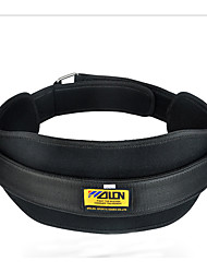 cheap -Dipping Belt/Weight Dip Belt Boxing