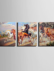 cheap -E-HOME Stretched Canvas Art  Running Steed Decoration Painting Set Of 3