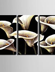 preiswerte -Handgemalte Blumenmuster/Botanisch Vertikal,Retro Drei Paneele Leinwand Hang-Ölgemälde For Haus Dekoration