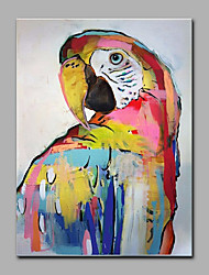 cheap -Hand-Painted The Parrot Animal  Oil Painting On Canvas Modern Wall Art Picture For Home Decoration