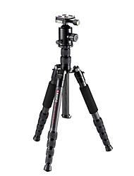 economico -Fibra di carbonio 41 5 Sezioni Canon Treppiede