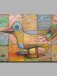 gallinula melanops 100% pintados a mão pinturas a óleo contemporâneas obras de arte de arte moderna para decoração de sala
