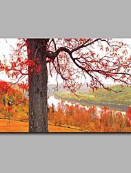 Peint à la main Vintage Format Horizontal,Artistique Inspiré de la nature Anniversaire Moderne/Contemporain Bureau / Affaires Noël Nouvel