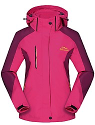 cheap -Women's Hiking 3-in-1 Jackets Outdoor Winter Windproof Rain-Proof Wearable Breathability Winter Jacket 3-in-1 Jacket Top Full Length