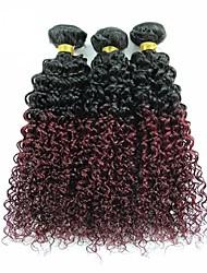 Virgin Brazilian Ombre Hair Weaves Kinky Curly Hair Extensions 3 Pieces Black/Dark Wine