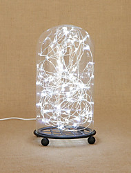abordables -1set LED Night Light Rouge Bleu Vert Blanc USB Décorative
