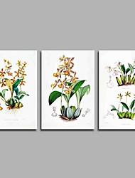 abordables -Pintada a mano Floral/Botánico Artístico Inspirado en la Naturaleza Rústico Moderno/Contemporáneo Oficina/ Negocios Pastoral Cool Navidad