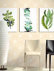cheap -Hand-Painted Botanical Horizontal Panoramic,Artistic Nature Inspired Rustic Casual Birthday Modern/Contemporary Office/Business Cool