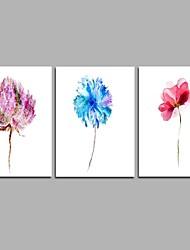 família de flores arte de parede moderna de 3 peças para decoração de sala 20x28inchx3