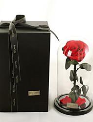 Недорогие -1 Филиал Гербарий Вечные цветы Букеты на стол Искусственные Цветы