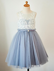 cheap -A-Line Knee Length Flower Girl Dress - Lace Tulle Sleeveless Scoop Neck with Lace Sash / Ribbon by LAN TING BRIDE®