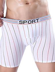 economico -Per uomo Sotto pantaloni,Sexy Sportivo A righe,Cotone