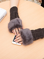 cheap -Women's Acrylic Special Fur Types Wrist Length Half Finger,Casual Solid Winter