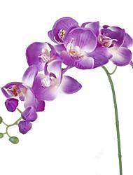 Недорогие -Искусственные Цветы 1 Филиал Пастораль Стиль Орхидеи Букеты на стол