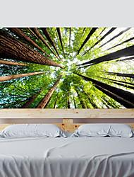 Недорогие -Пейзаж ботанический Наклейки 3D наклейки Декоративные наклейки на стены, Винил Украшение дома Наклейка на стену Стена