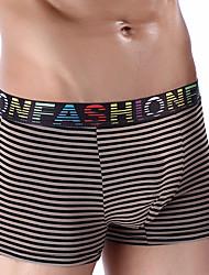 cheap -Men's Stretchy Striped Boxers Underwear Medium, Cotton 1pc Black Red Yellow Fuchsia