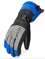 abordables -Actividades y deportes Guantes de esquí Unisex Dedos completos Mantiene abrigado Esquí Actividades y deportes Deportes de Nieve Bicicleta
