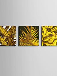 Недорогие -Отпечатки на холсте Modern, 3 панели холст Квадратный С картинкой Декор стены Украшение дома