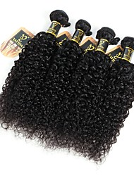 cheap -Brazilian Hair Kinky Curly Virgin Human Hair Natural Color Hair Weaves 4 Bundles 8-28inch Human Hair Weaves 7a Natural Black