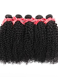 cheap -Indian Hair / Kinky Curly Curly One Pack Solution 6 Bundles Human Hair Weaves Soft / New Arrival / Hot Sale Natural Black Human Hair Extensions Women's