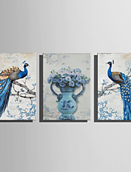 cheap -Print Stretched Canvas Prints - Animals Floral / Botanical Modern