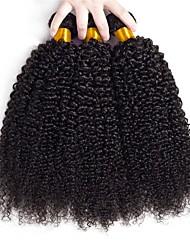 Недорогие -3 Связки Бразильские волосы Кудрявый Натуральные волосы Человека ткет Волосы / Накладки из натуральных волос Ткет человеческих волос Подарок / Лучшее качество / Новое поступление Естественный цвет