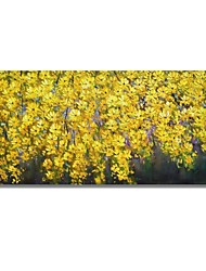 cheap -STYLEDECOR Modern Hand Painted Abstract Hearty Yellow Flowers Oil Painting on Canvas Wall Art