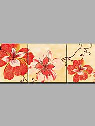 baratos -Estampado Laminado Impressão De Canvas / Estampados de Lonas Esticada - Moderno / Floral / Botânico Modern