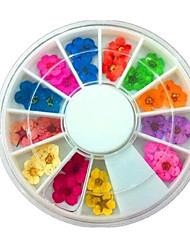abordables -36 pcs Consejos artificiales para uñas Kit de uñas Joyas de Uñas Diseños de Moda / Encaje arte de uñas Manicura pedicura Ropa Cotidiana Elegante / Simple / Joyería de uñas
