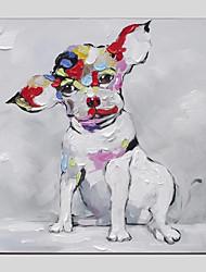 abordables -Pintura al óleo pintada a colgar Pintada a mano - Naturaleza muerta Modern Lona