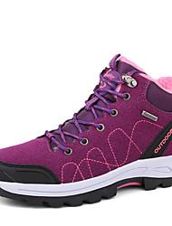 cheap -Women's Mesh Winter Comfort Athletic Shoes Hiking Shoes Flat Heel Black / Purple / Light Grey