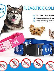 baratos -Cachorros / Gatos Colarinho Casual / Segurança Frases e Citações Poliéster