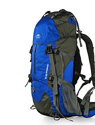 Недорогие -60 L Заплечный рюкзак - Пригодно для носки, Воздухопроницаемость На открытом воздухе Пешеходный туризм, Восхождение, Лыжи Нейлон Красный, Тёмно-синий, Темно-зеленый