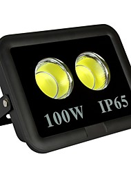 cheap -1pc 100 W LED Floodlight Waterproof / Decorative Warm White / Cold White 85-265 V Outdoor Lighting / Courtyard / Garden