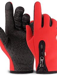Недорогие -Полныйпалец Муж. Мотоцикл перчатки Фланель Сохраняет тепло / Защитный / Non Slip