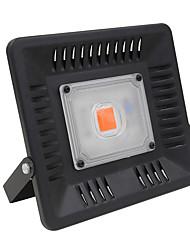billige -1pc 50 W 2000-2500 lm 1 LED perler Fullt Spektrum Voksende lysarmatur Rød 110 V