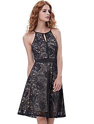 Недорогие -Жен. Элегантный стиль Оболочка Платье - Геометрический принт, Кружева До колена