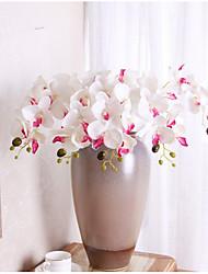 Χαμηλού Κόστους -Ψεύτικα λουλούδια 5 Κλαδί Κλασσικό Σύγχρονη Σύγχρονη Ευρωπαϊκό Ορχιδέες Λουλούδι για Τραπέζι
